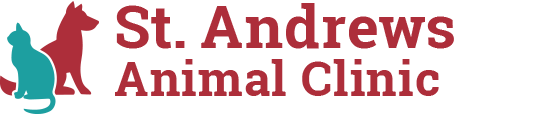 Logo for Veterinarians in Columbia | St. Andrews Animal Clinic